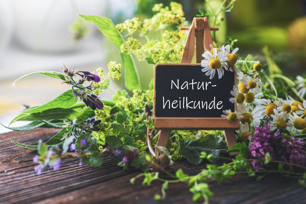 Naturheilkunde - Aderlass